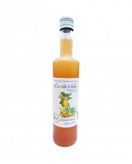 Puro Drink Zenzero e Limone Bio artigianale - bottiglia 500ml - Puro Natura
