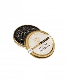 Caviale Beluga Siberian - 50g - Caviar Giaveri