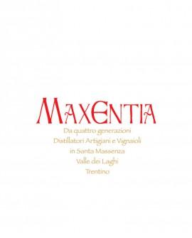 Grappa Teroldego 500 ml - Maxentia
