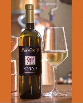 Vino Nosiola 750 ml - Maxentia