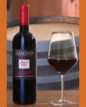 Vino Lagrein 750 ml - Maxentia