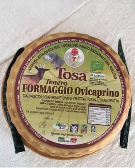 Formaggio Ovicaprino Tenero Biologico (misto pecora e capra) 2,3-2,5 kg - Formaggi Tosa