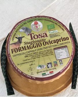 Formaggio Ovicaprino Stagionato Biologico (misto pecora e capra) 2,3 kg - Formaggi Tosa