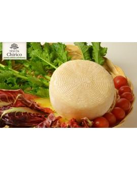 Cacioricotta di capra curato 350-400 g - Caseificio Chirico