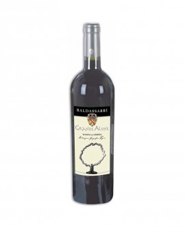 Grande Alone Vino IGT Umbria barricato - Bottiglia da 0,75 Lt - Cantina Baldassarri