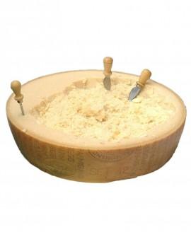 Parmigiano Reggiano Vacche Rosse razza Reggiana 24-30 mesi - SV Mezza forma 18,5 kg luna orizzontale- Consorzio Vacche Rosse