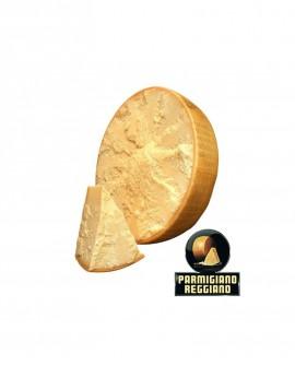 1/2 Forma SV taglio luna orizzontale Parmigiano Reggiano DOP classico mezzano rigato 13-14 mesi - 19 kg - Montanari & Gruzza