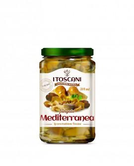 Fungata mediterranea - 314 ml - Agrifood Toscana
