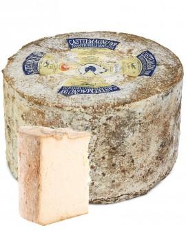 Castelmagno Dop misto latte crudo 5Kg stagionatura 90gg selezione - Gildo Formaggi
