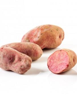 Patata Cuore Rosso - sacco rete 5Kg - Perle della Tuscia