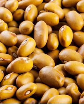 Fagioli bruni amarantini dei Volsinii - 1Kg - Perle della Tuscia