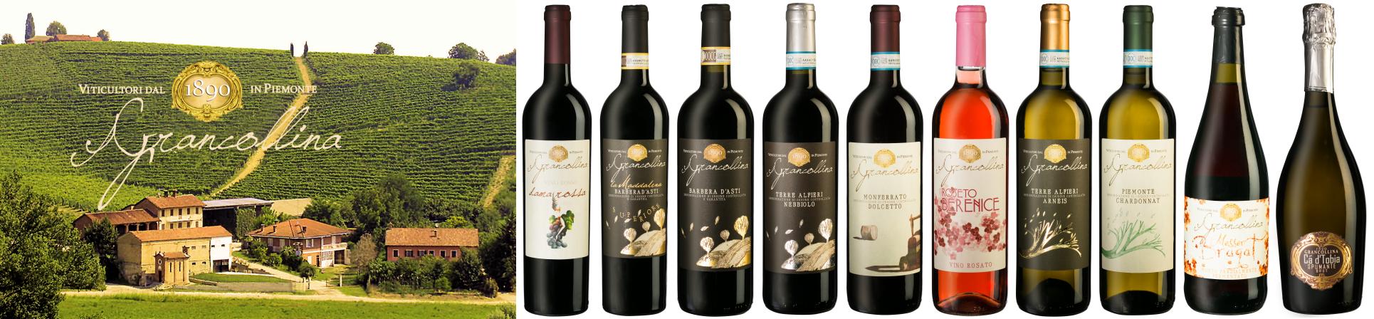 B2B GUSTOX - il Marketplace all'ingrosso delle eccellenze agroalimentari italiane - Vini Piemonte - Cantina GranCollina