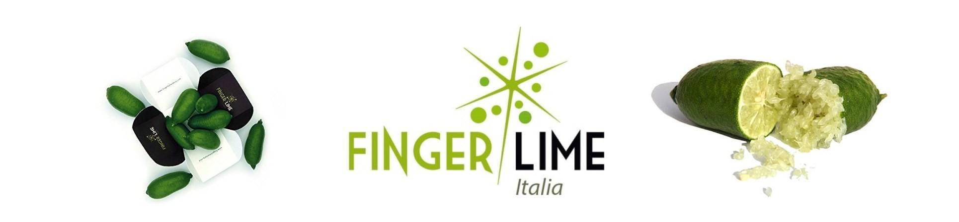 B2B GUSTOX - il Marketplace all'ingrosso delle eccellenze agroalimetari italiane - Finger Lime italia