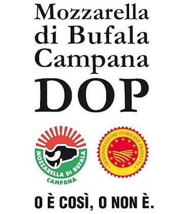 Casearia Agricol Sud - Vendita ingrosso - Campania