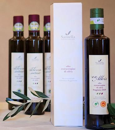 Olio Seggiano DOP e IGP Toscano - Olearia Santella - ingrosso